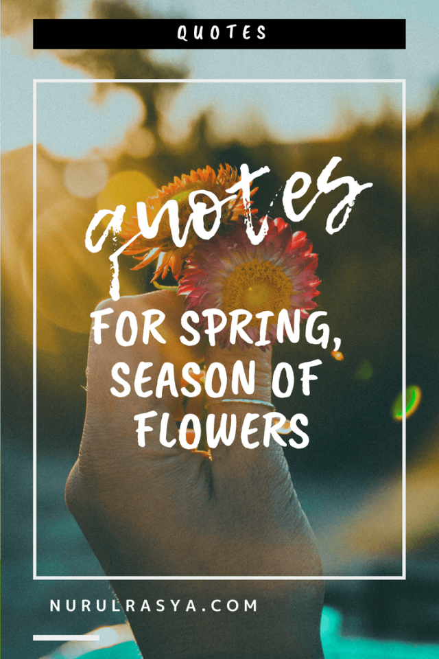 Quotes For Spring _ Season of Flowers