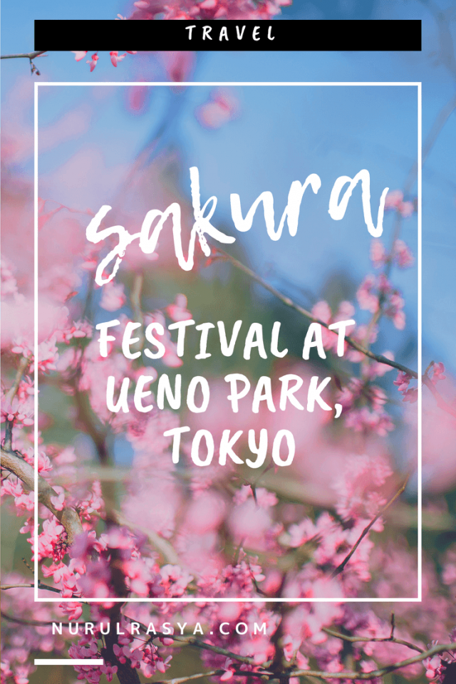 Sakura Festival At Ueno Park, Tokyo