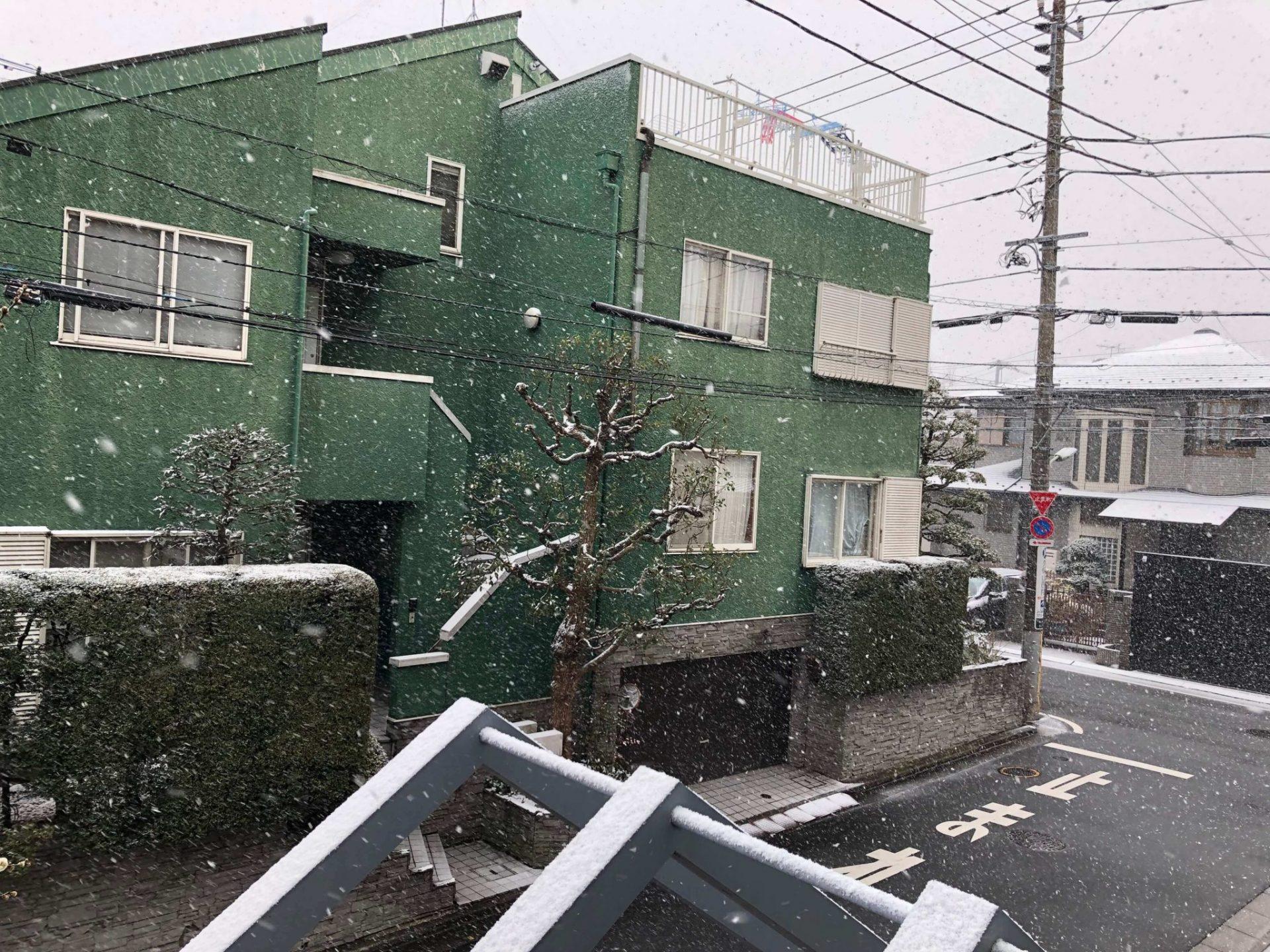 Snow In Tokyo Photo