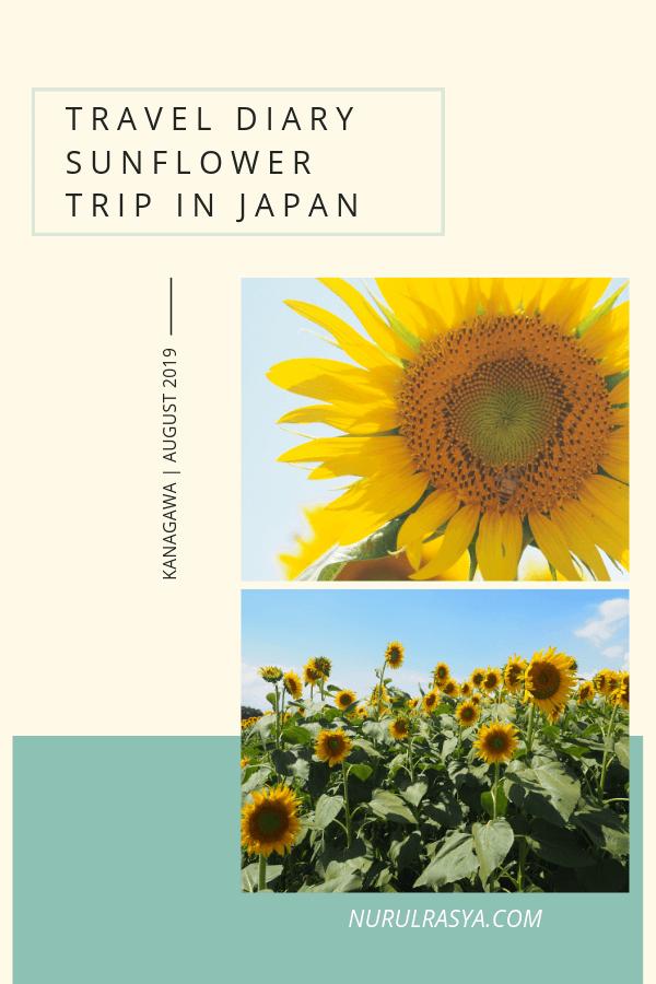 Must-Visit Sunflower Farm near Tokyo, Sunflower Trip Photo Diary